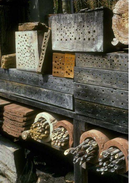 Garten Bienenfreundlich Gestalten Bund Naturschutz Bund