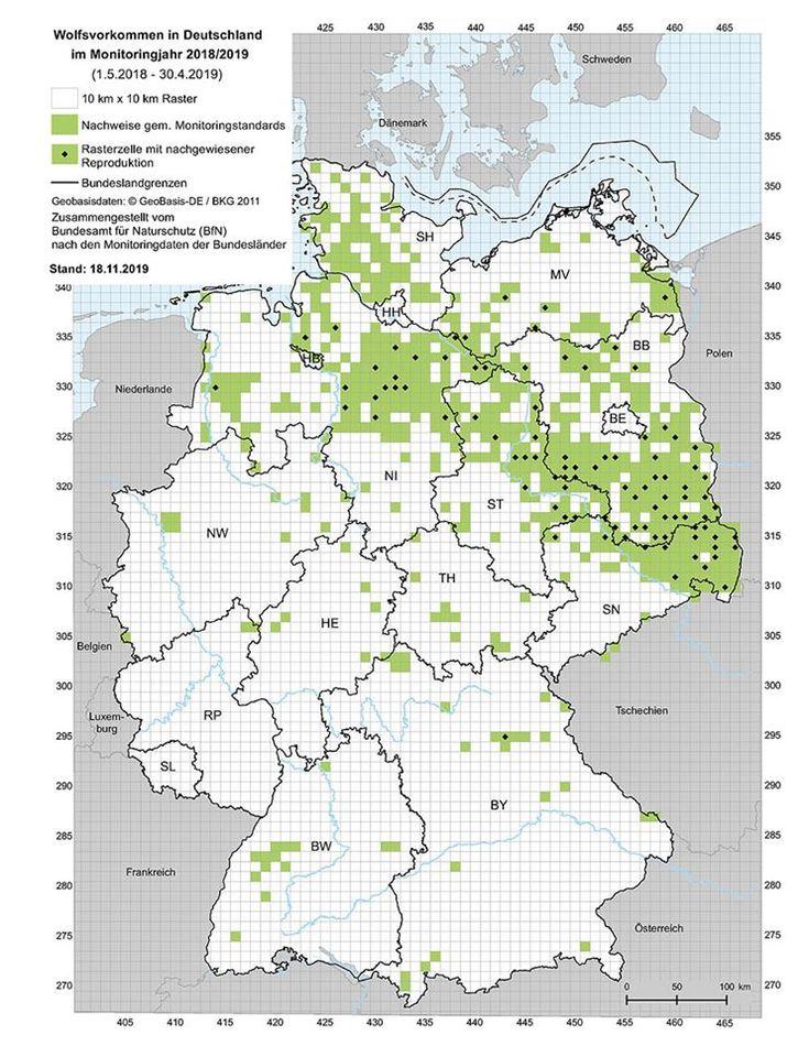 Der Wolf In Bayern Bund Naturschutz